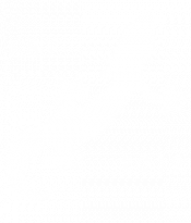 https://roughtailbeer.com/wp-content/uploads/2021/02/Gecko-Only2-01-3-e1612150508618.png
