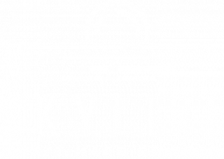 https://roughtailbeer.com/wp-content/uploads/2021/02/Skyline-white-320x227.png